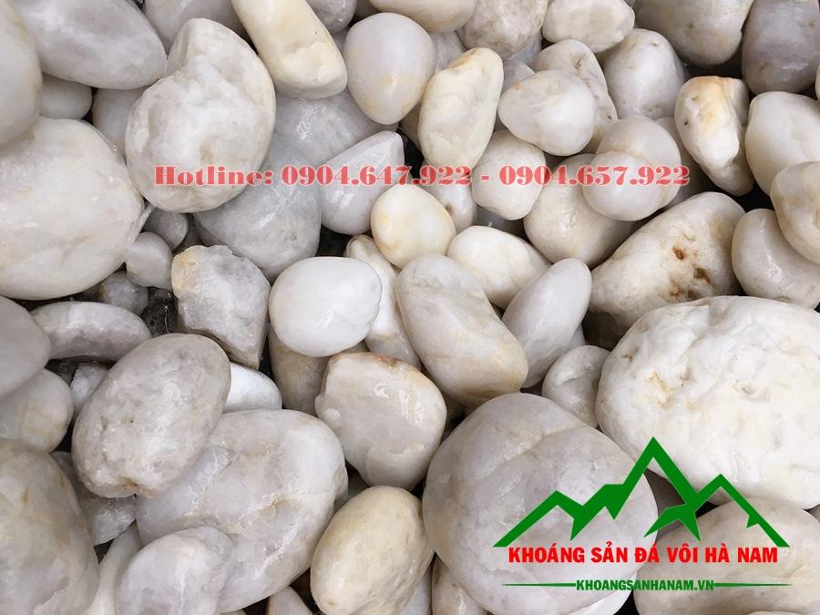 sỏi đá cuội trắng trang trí